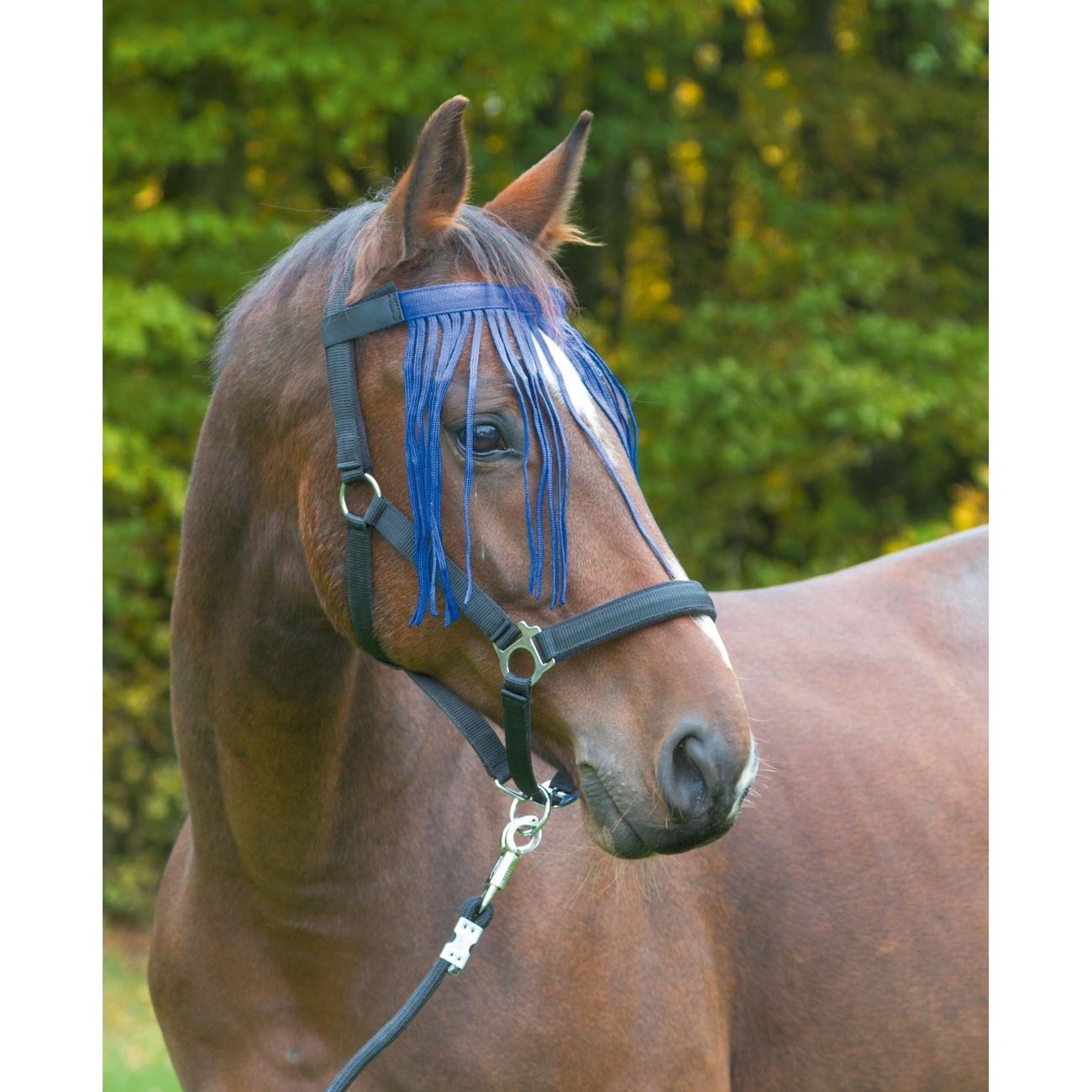 Kerbl Fliegenfransenband für Pferde, Bild 2