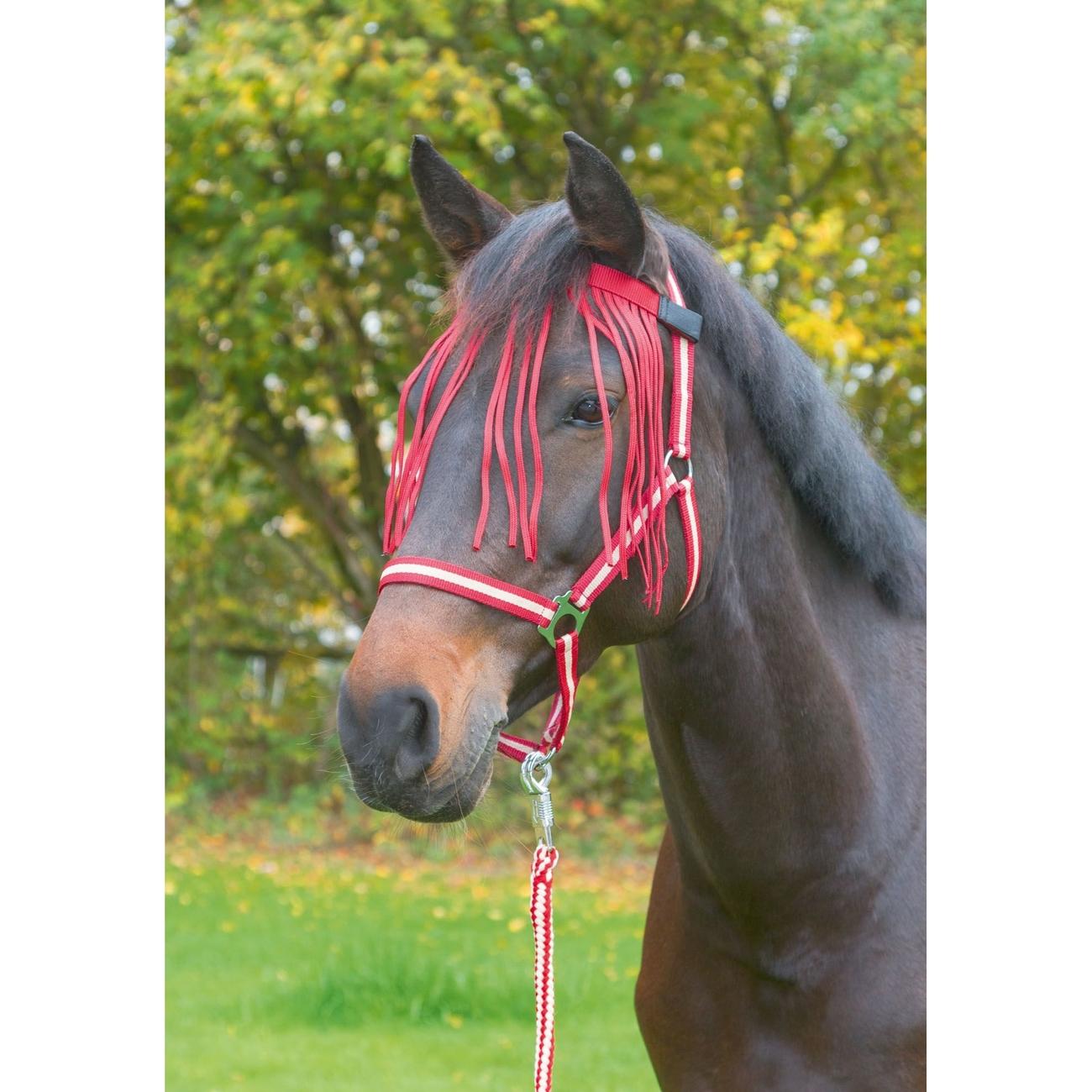 Kerbl Fliegenfransenband für Pferde, Bild 3