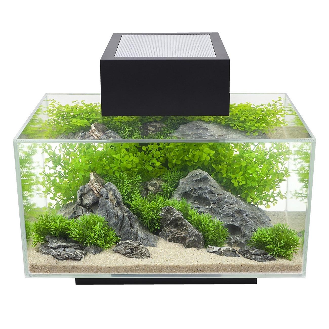 Fluval Edge I Aquarium