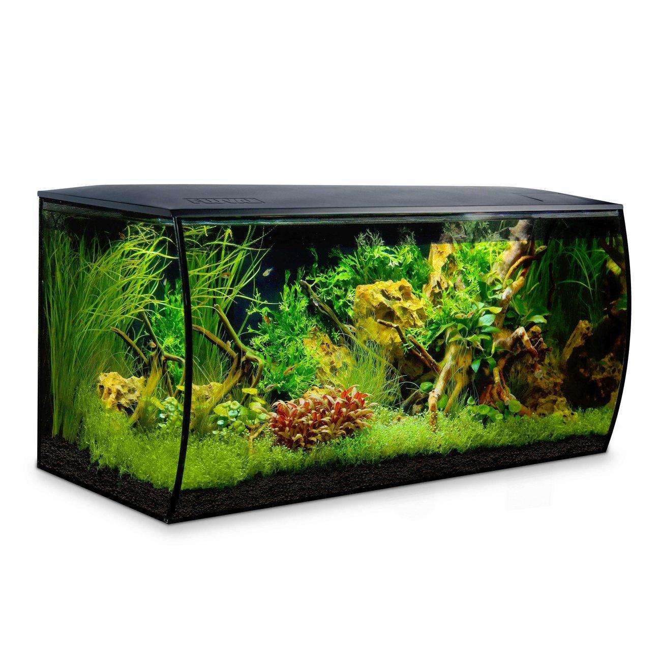 Fluval Flex 123 Liter Aquarium