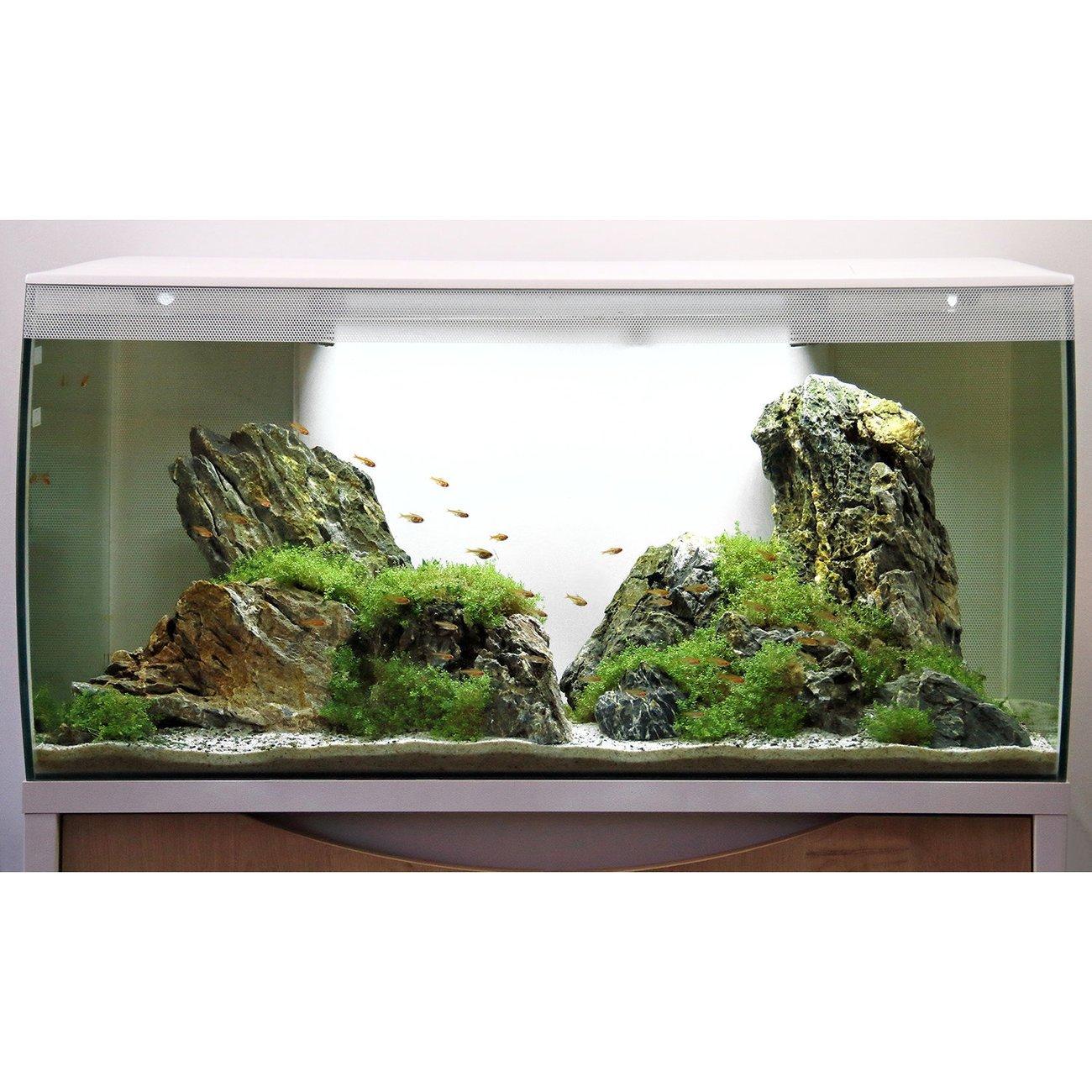 Fluval Flex 123 Liter Aquarium, Bild 8