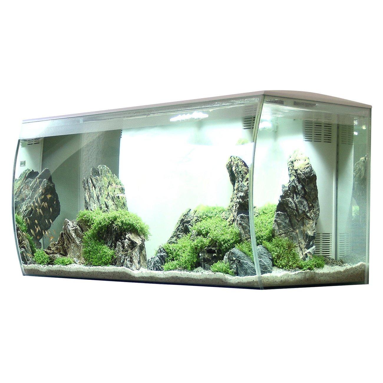 Fluval Flex 123 Liter Aquarium, Bild 13