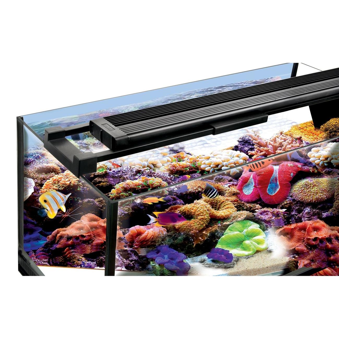 Fluval Marine & Reef 2.0, Bild 4
