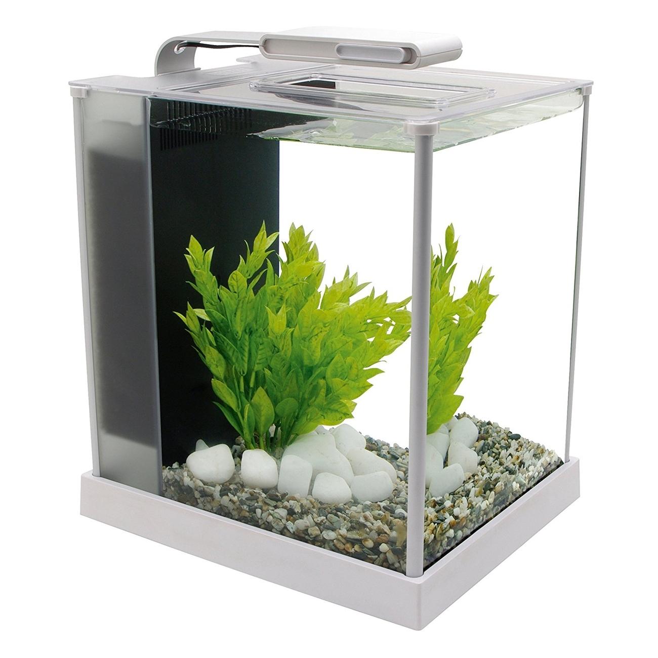 Hagen Fluval SPEC Süßwasser Aquarium Set, SPEC - 10,7 l weiß (22,3 x 32,5 x 27,5 cm)