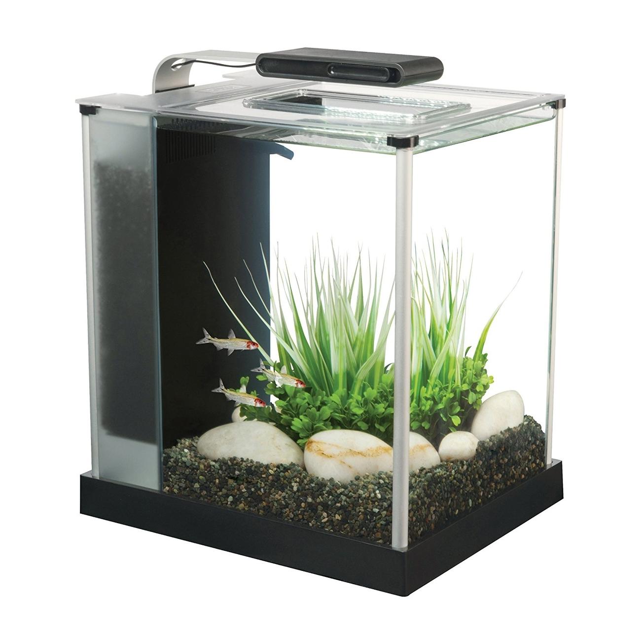 Hagen Fluval SPEC Süßwasser Aquarium Set, SPEC 3 - 10,7 l schwarz (22,3 x 30,5 x 27,5 cm)