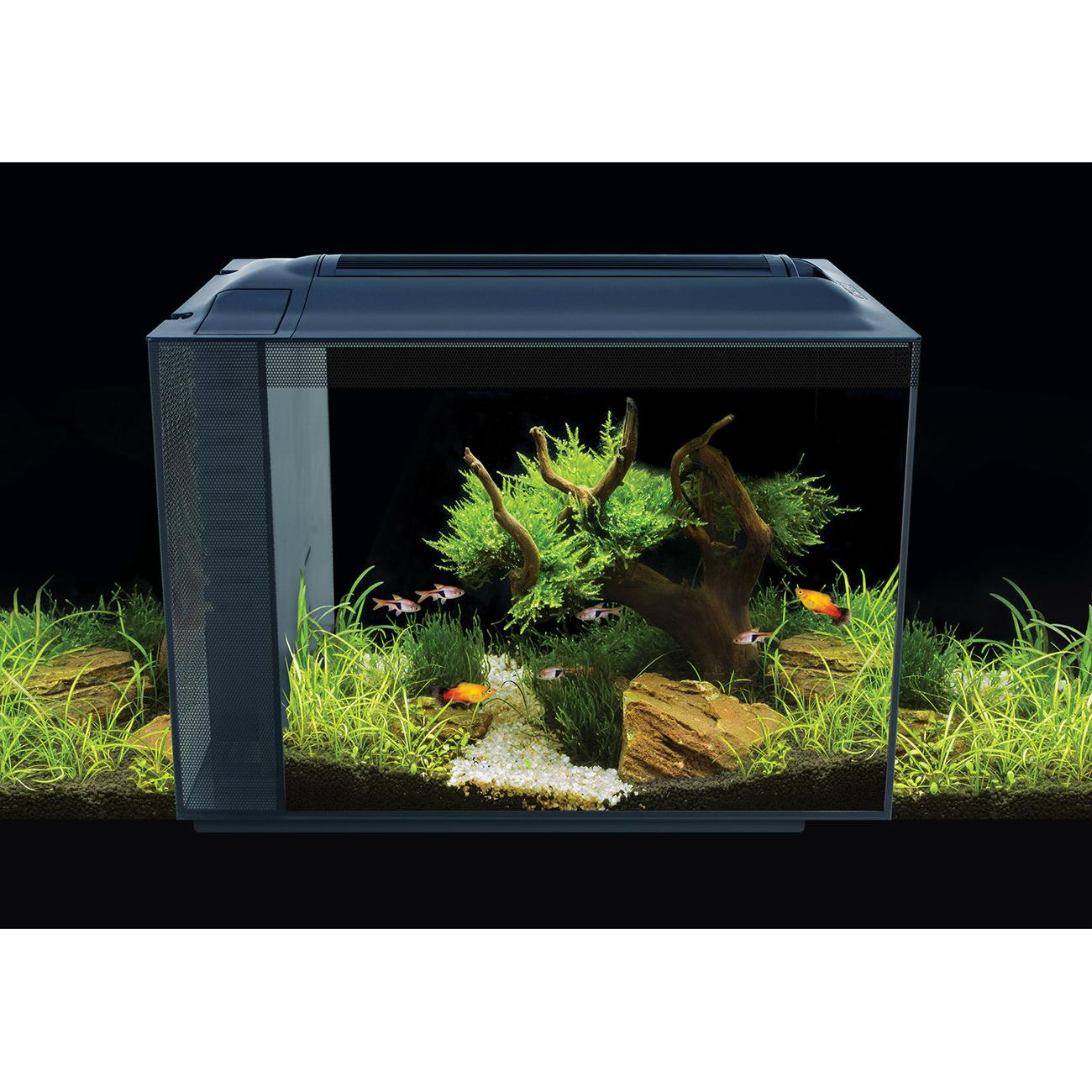 Fluval SPEC XV Aquarium 60 L, Bild 2