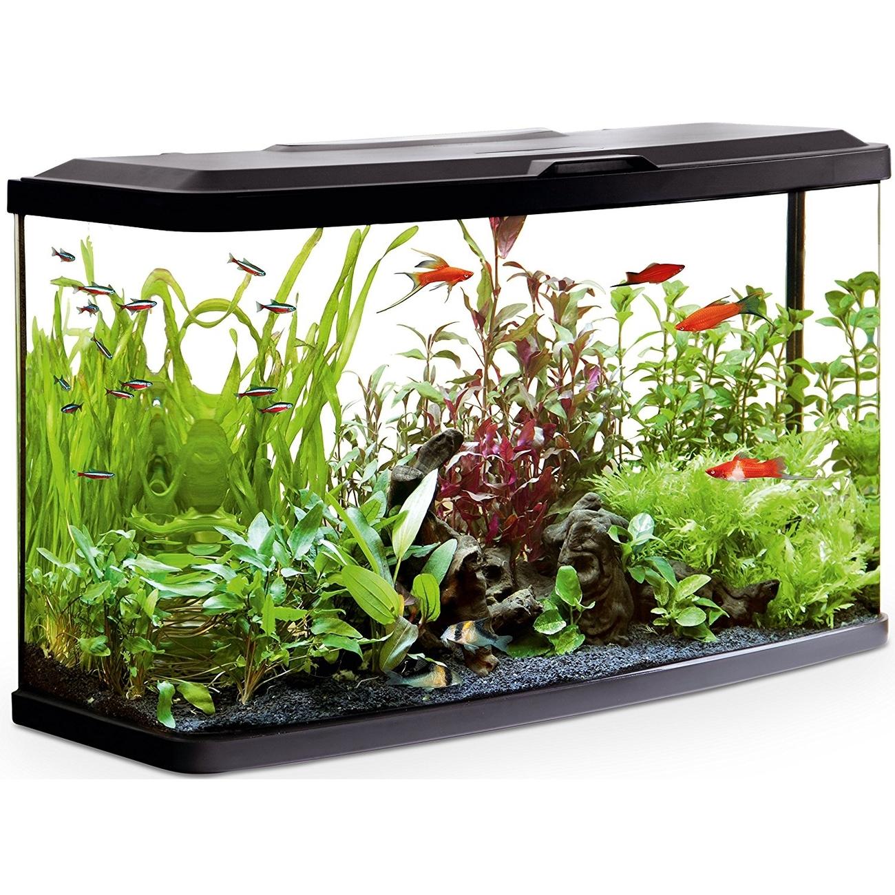 Hagen Fluval Vue Aquarienset, 87 Liter Aquarium: 76 x 30 x 45,7 cm