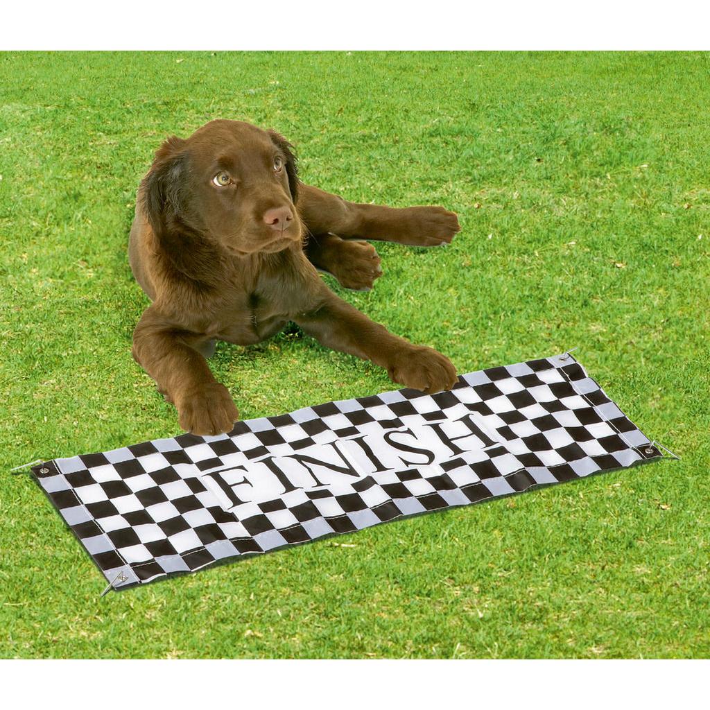 Karlie Fun Agility Starter Set für Hunde, Bild 2