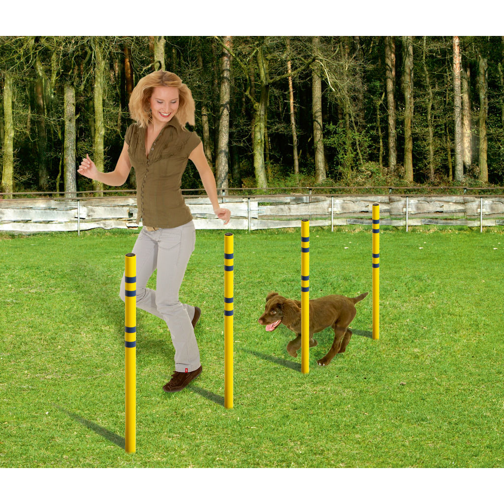 Karlie Fun Agility Starter Set für Hunde, Bild 3