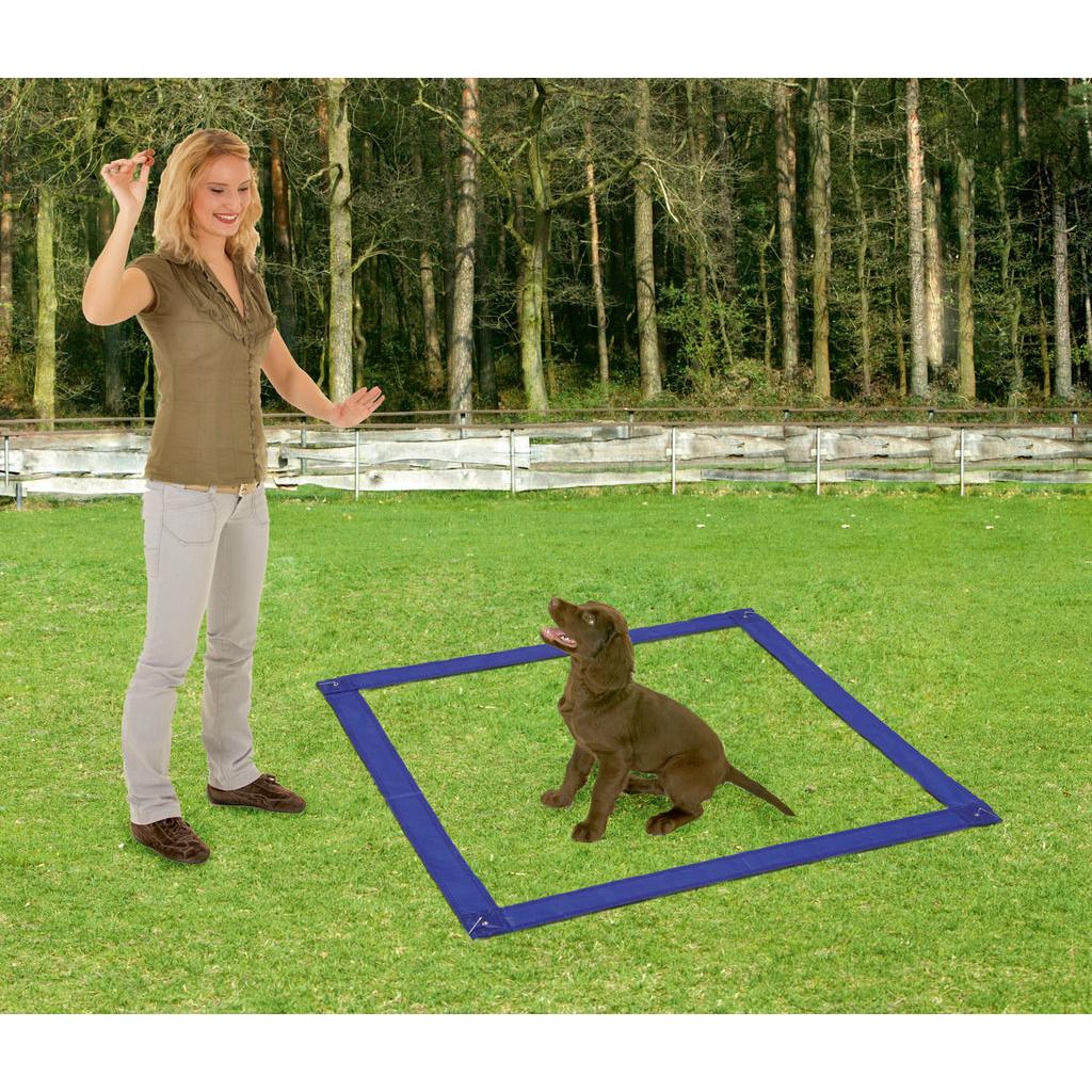 Karlie Fun Agility Starter Set für Hunde, Bild 4