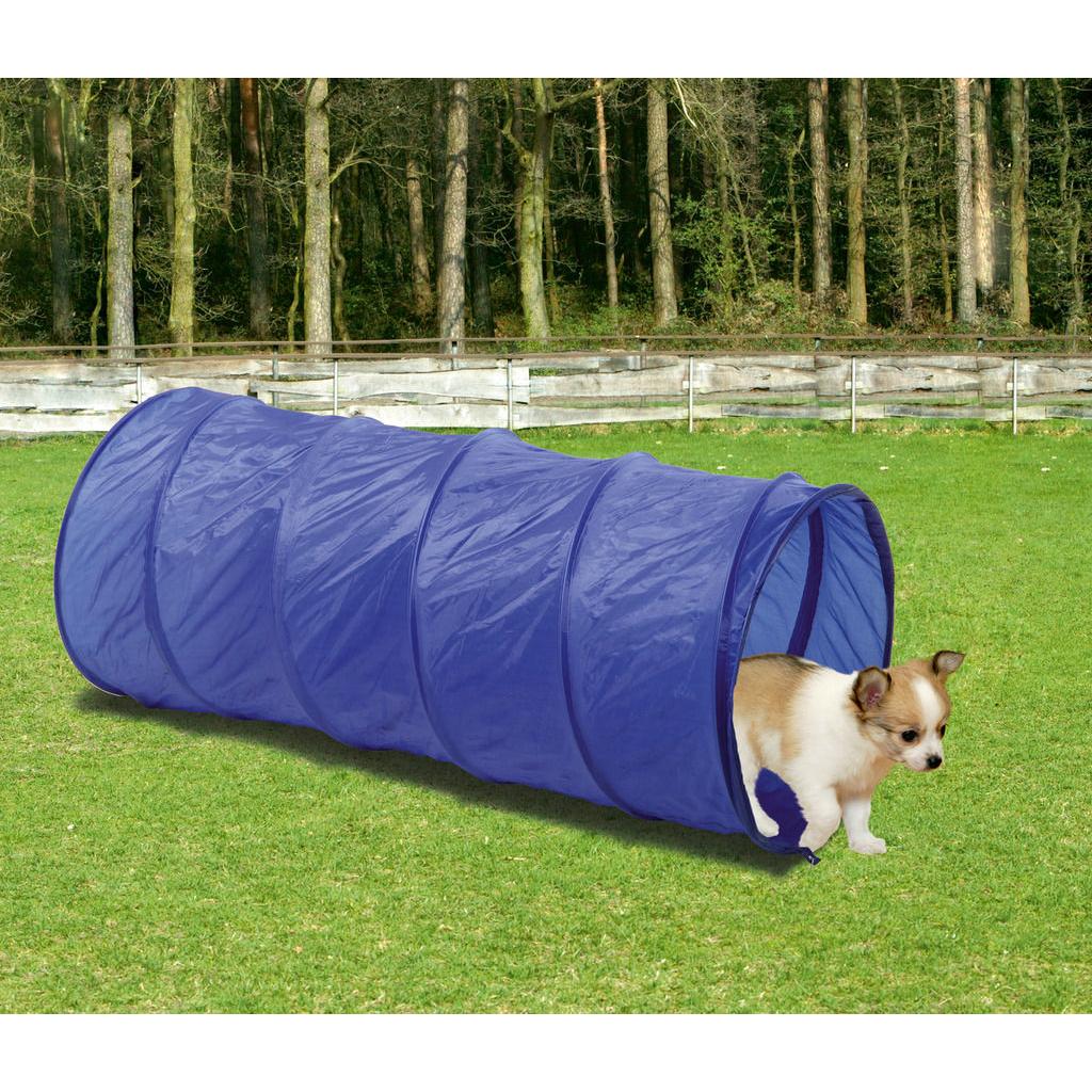 Karlie Fun Agility Starter Set für Hunde, Bild 5