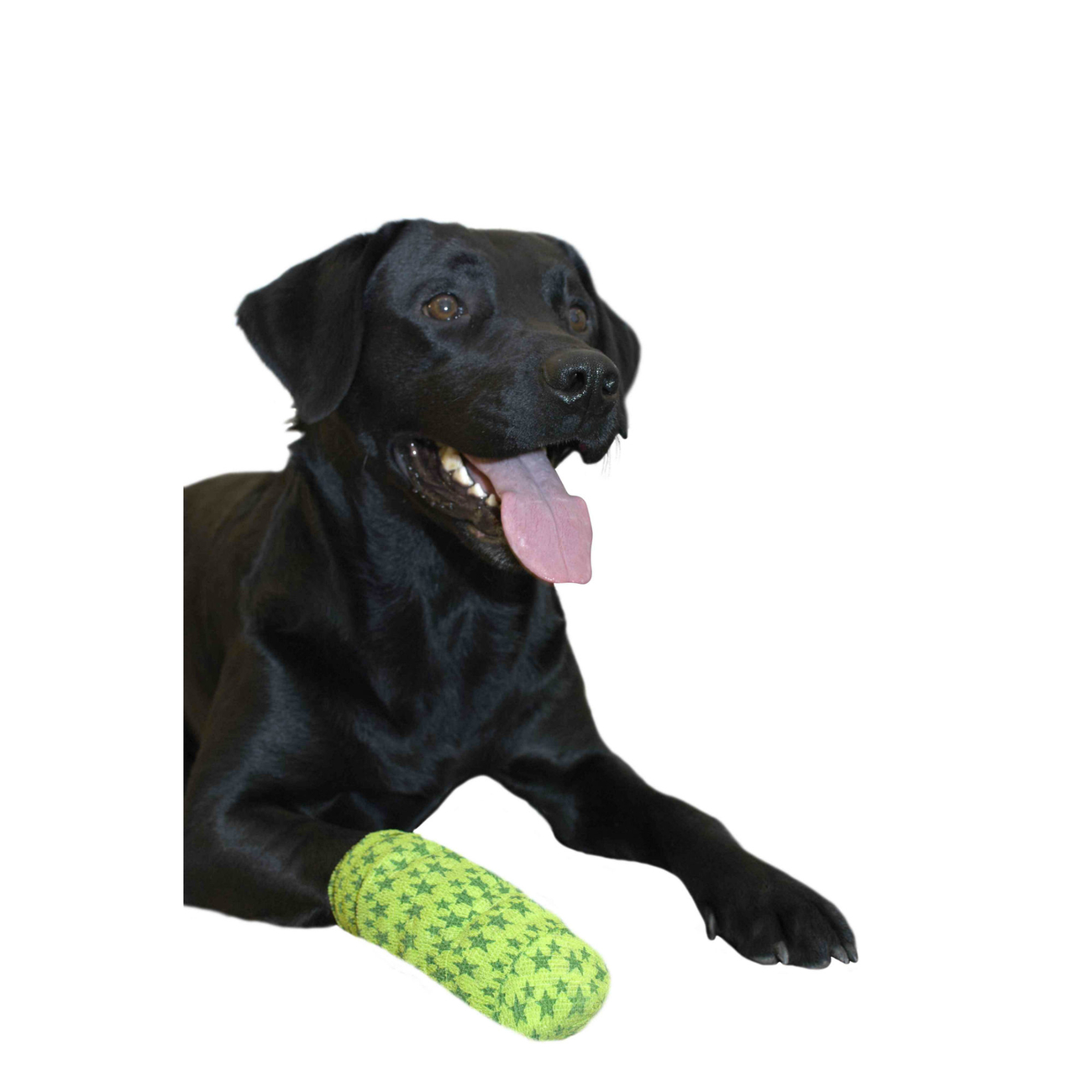 Buster Fun Flex Bandage für Hunde, Bild 2