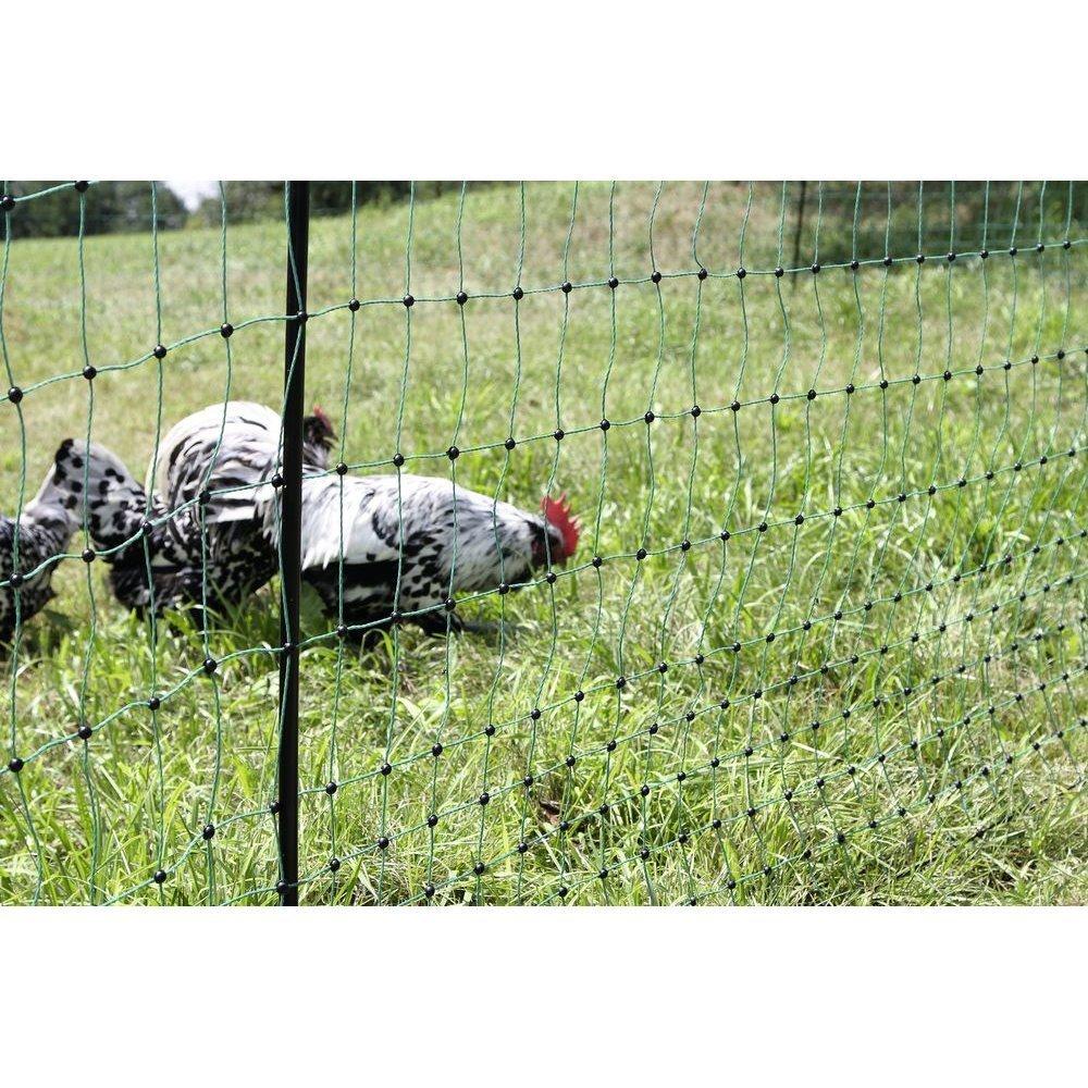 Kerbl Geflügelnetz PoultryNet grün elektrifizierbar, Bild 6