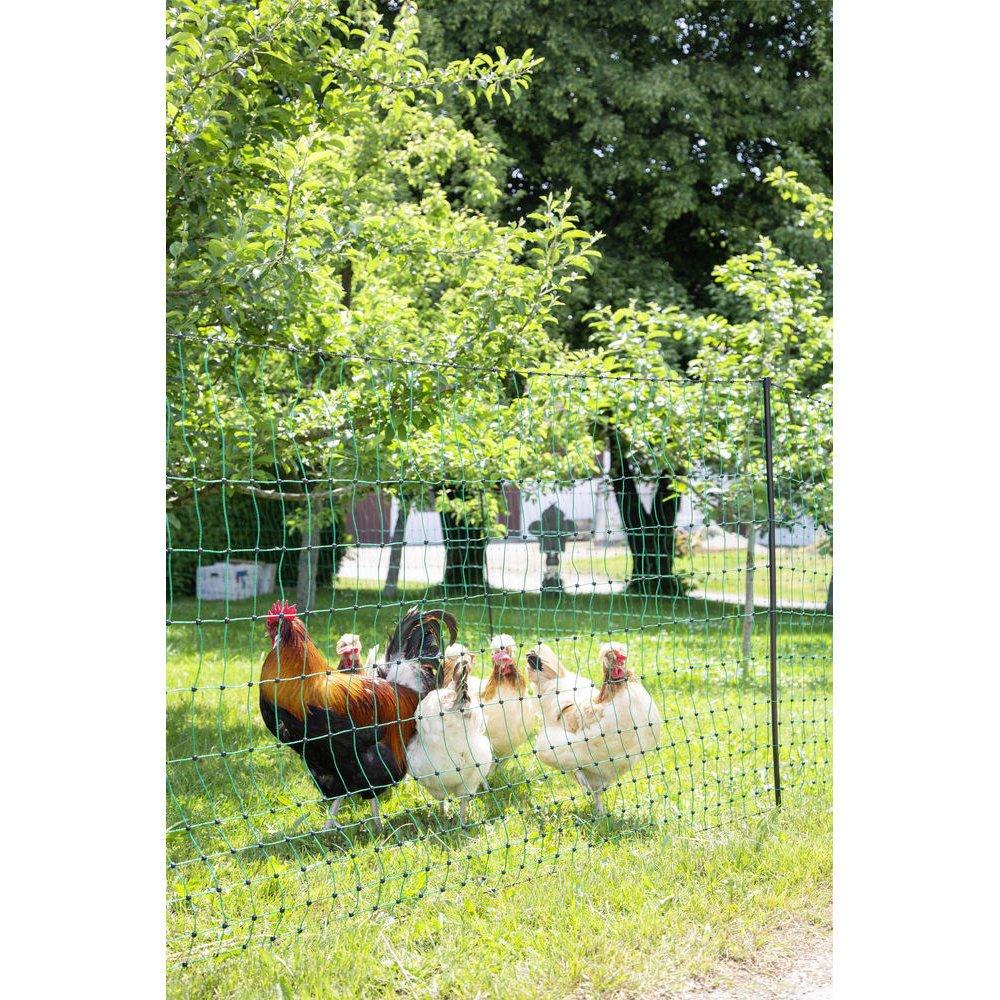 Kerbl Geflügelnetz PoultryNet grün elektrifizierbar, Bild 16