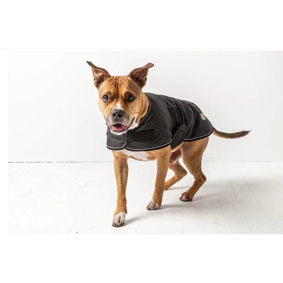 GF Pet Blanket Jacket für Hunde, Bild 2