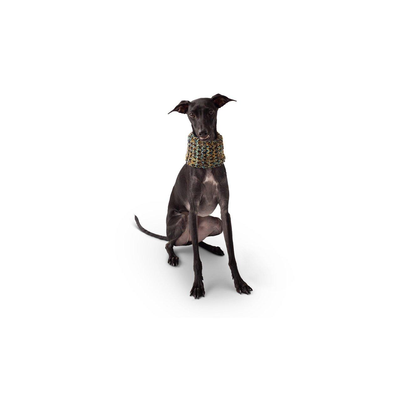 GF Pet Hundeschal auch für Frauchen, Bild 5