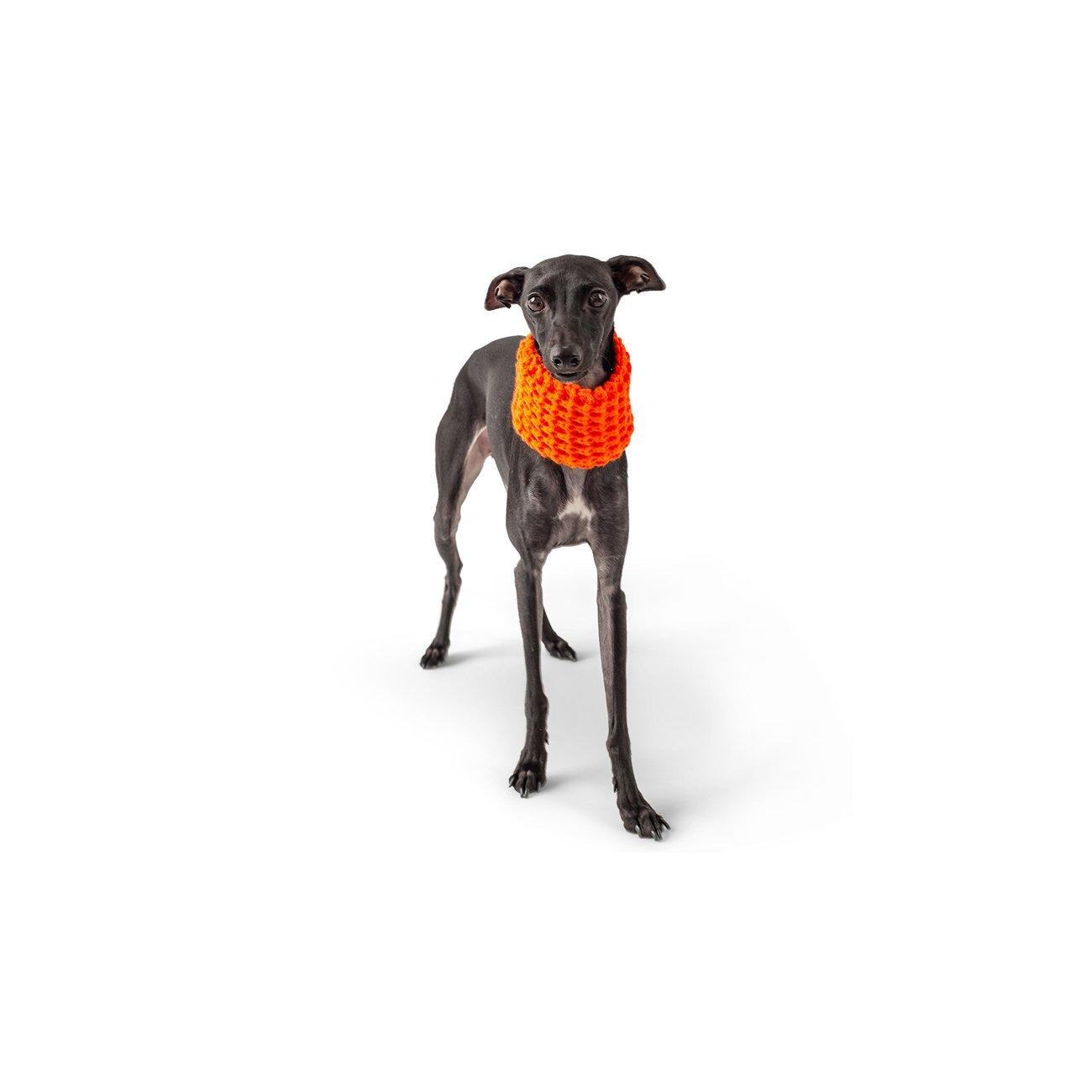 GF Pet Hundeschal auch für Frauchen, Bild 8