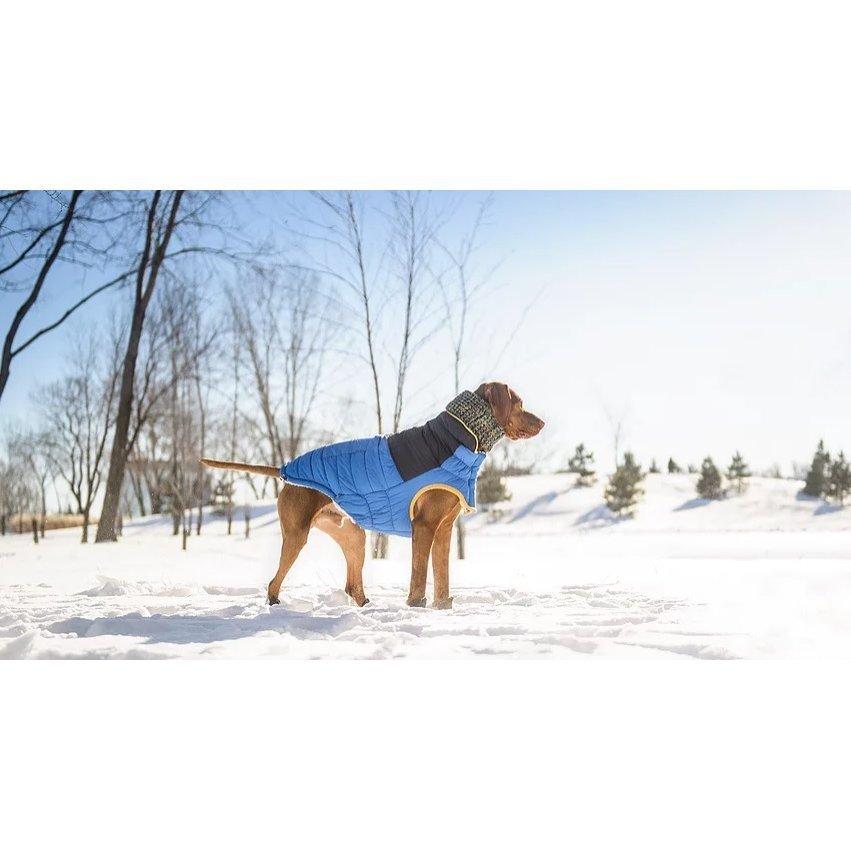 GF Pet Hundeschal auch für Frauchen, Bild 4