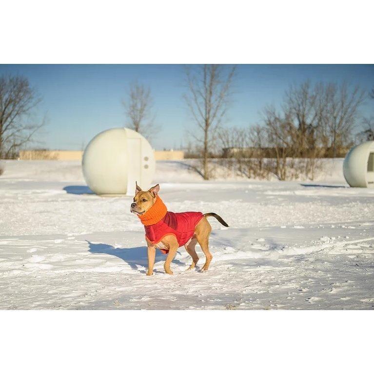 GF Pet Hundeschal auch für Frauchen, Bild 9