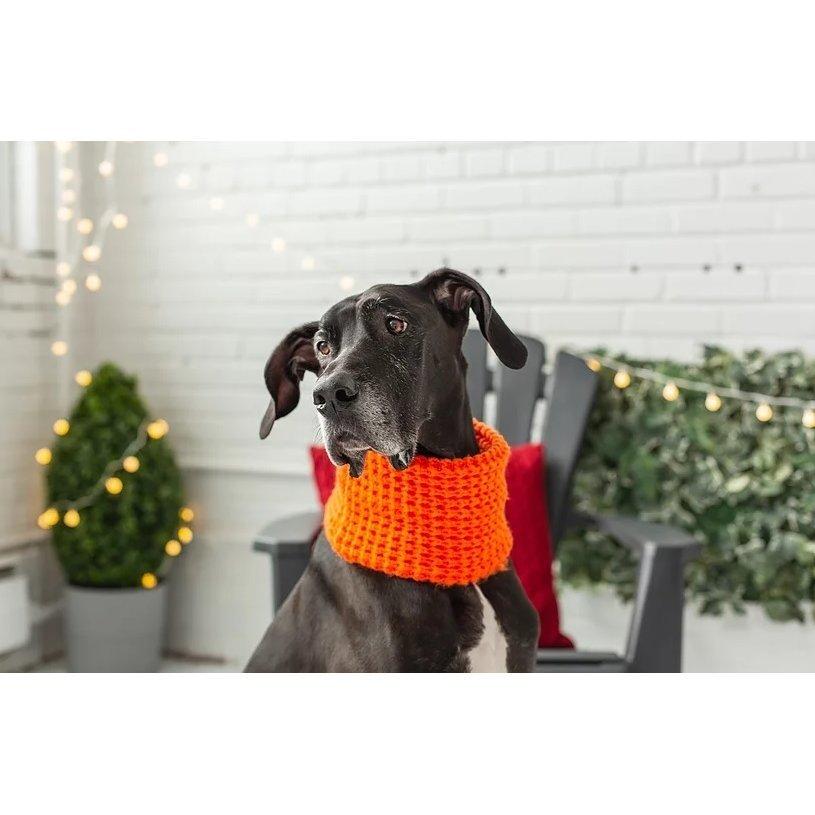 GF Pet Hundeschal auch für Frauchen, Bild 7