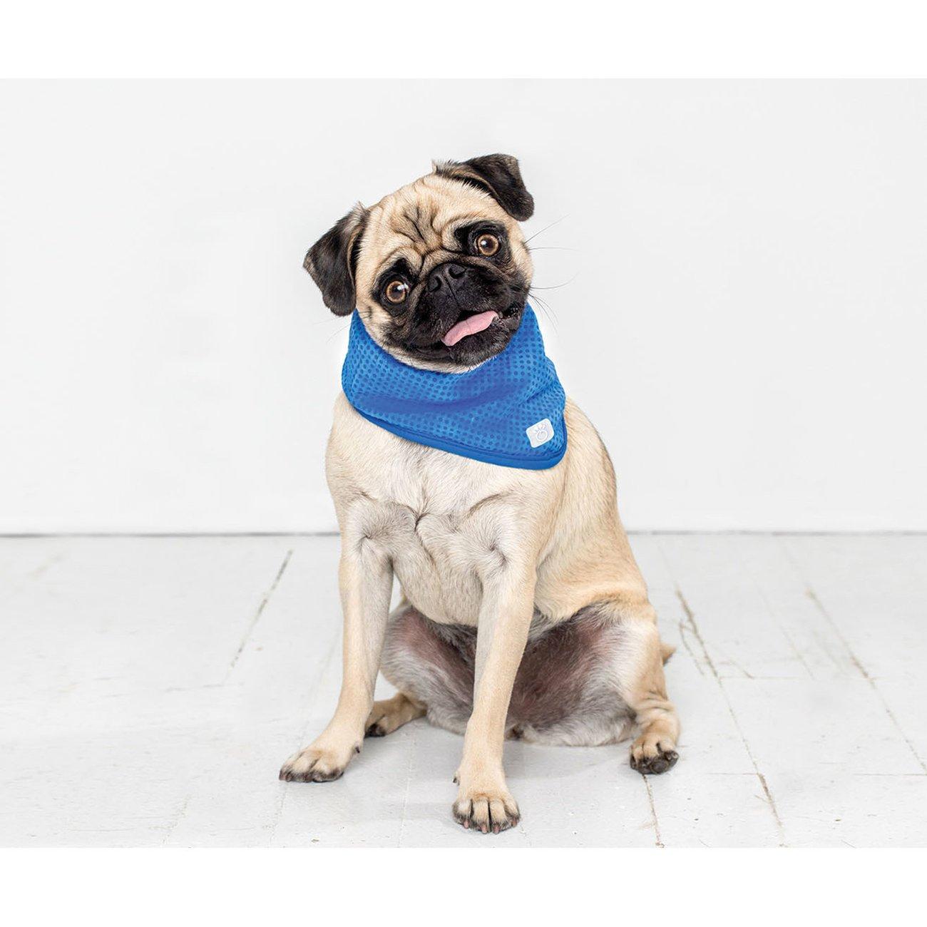 GF Pet Kühlbandana für Hunde, Bild 3