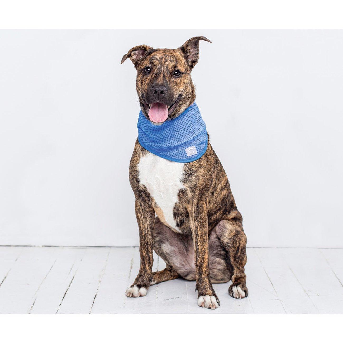 GF Pet Kühlbandana für Hunde, Bild 2