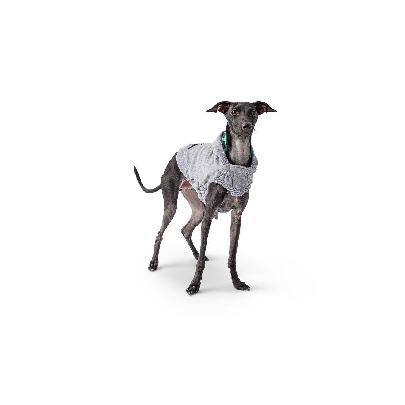 GF Pet Lodge Hoodie für Hunde, Bild 2