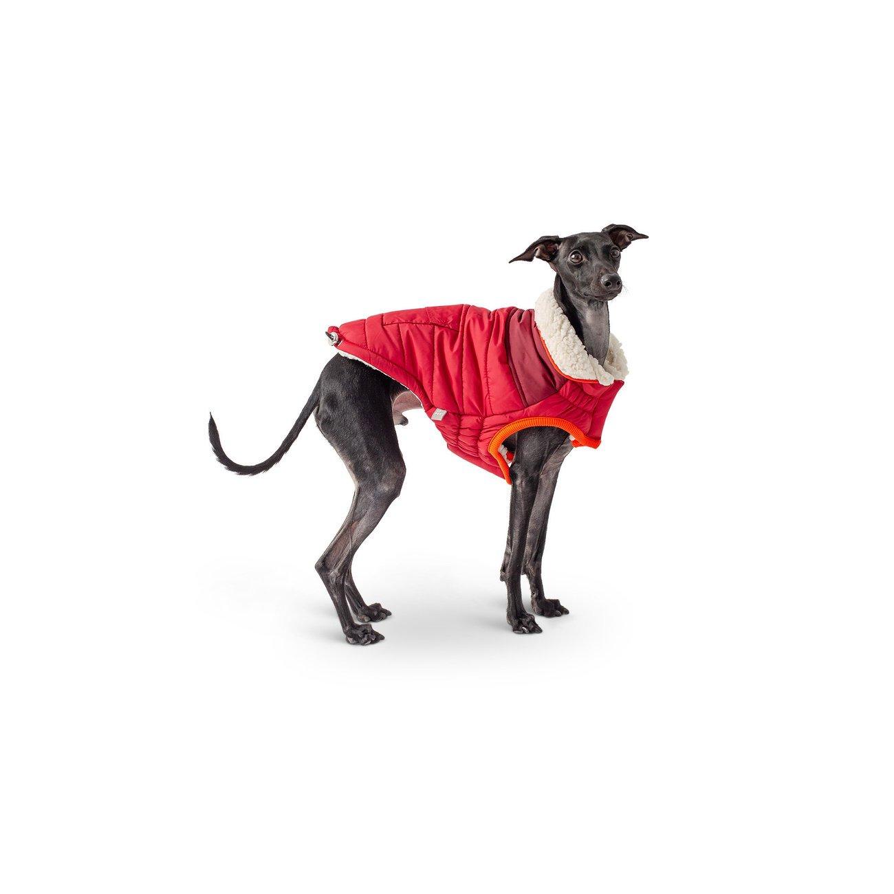 GF Pet Scout Jacke für Hunde, Bild 2
