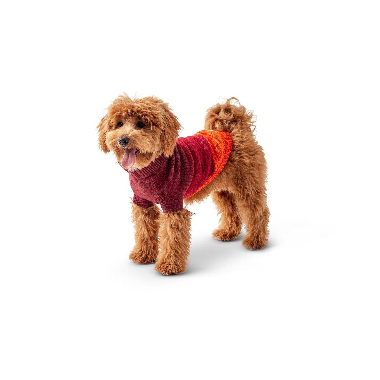 GF Pet Trail Sweater für Hunde, Bild 4