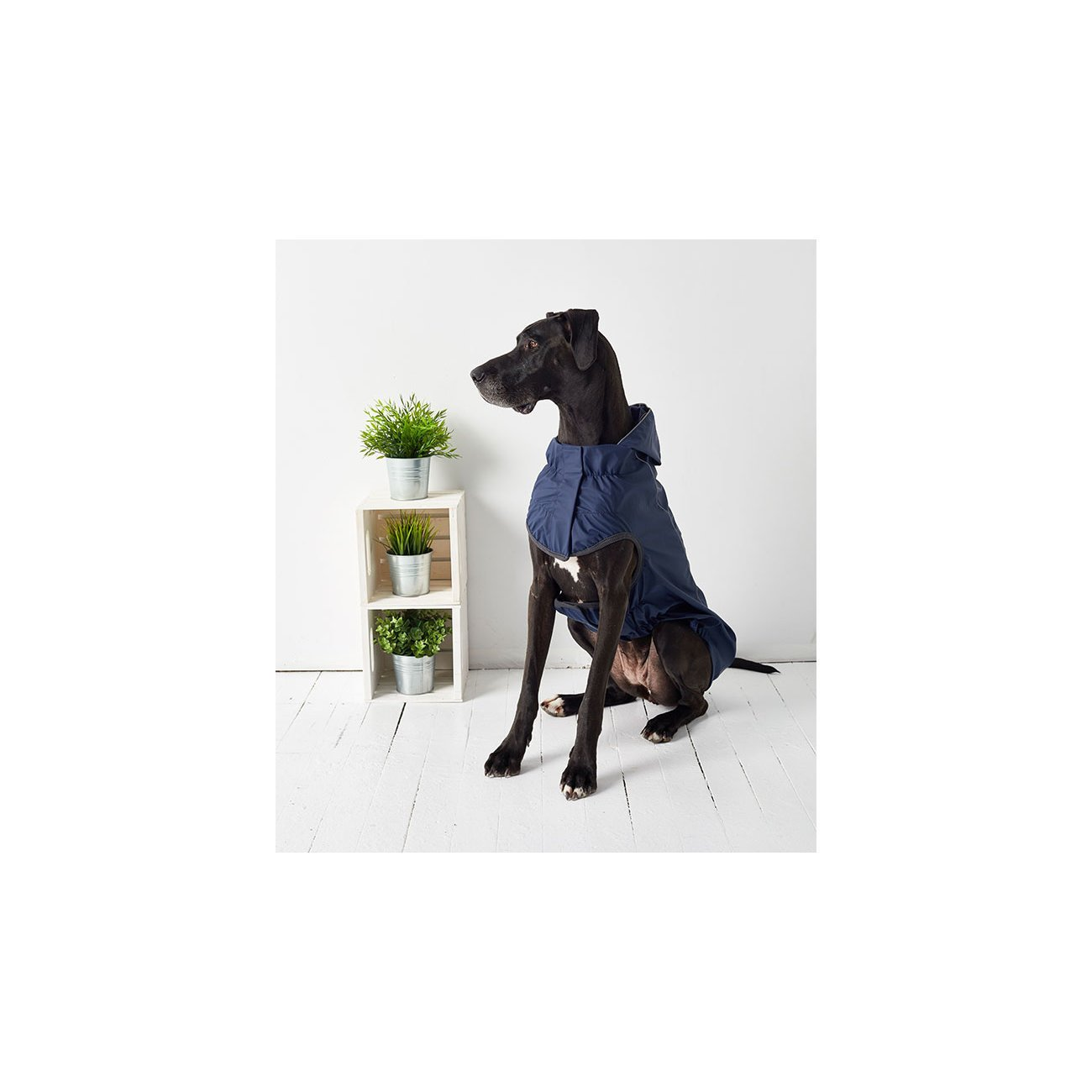 GF Pet wendbarer Hunderegenmantel, Bild 16
