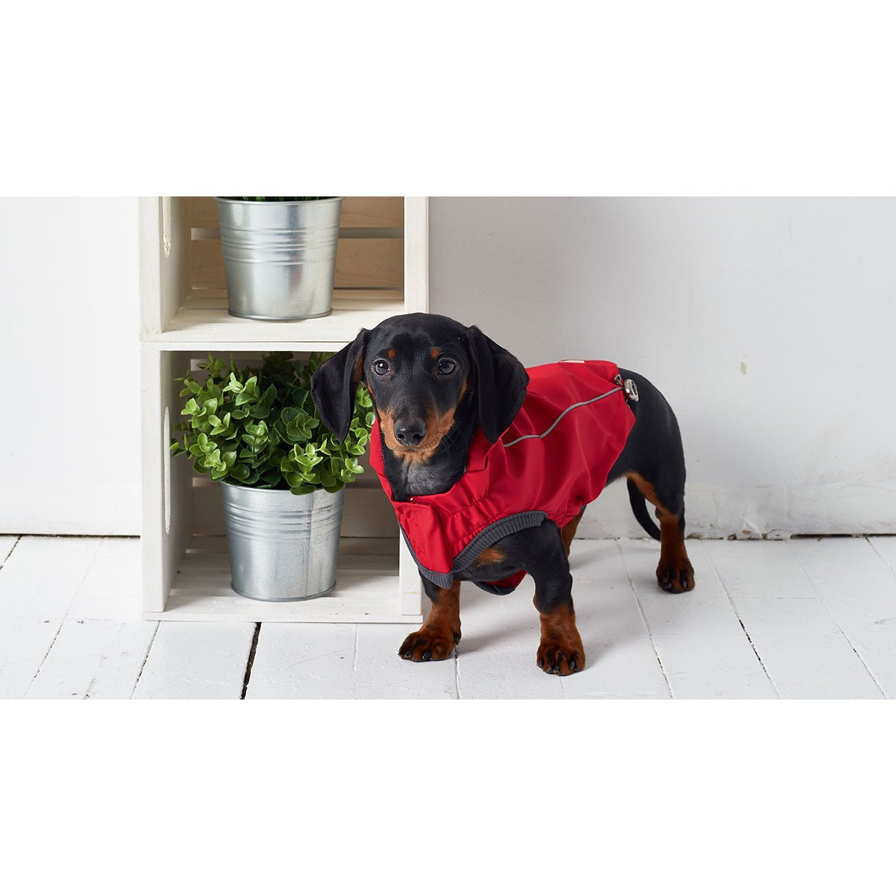 GF Pet wendbarer Hunderegenmantel, Bild 22