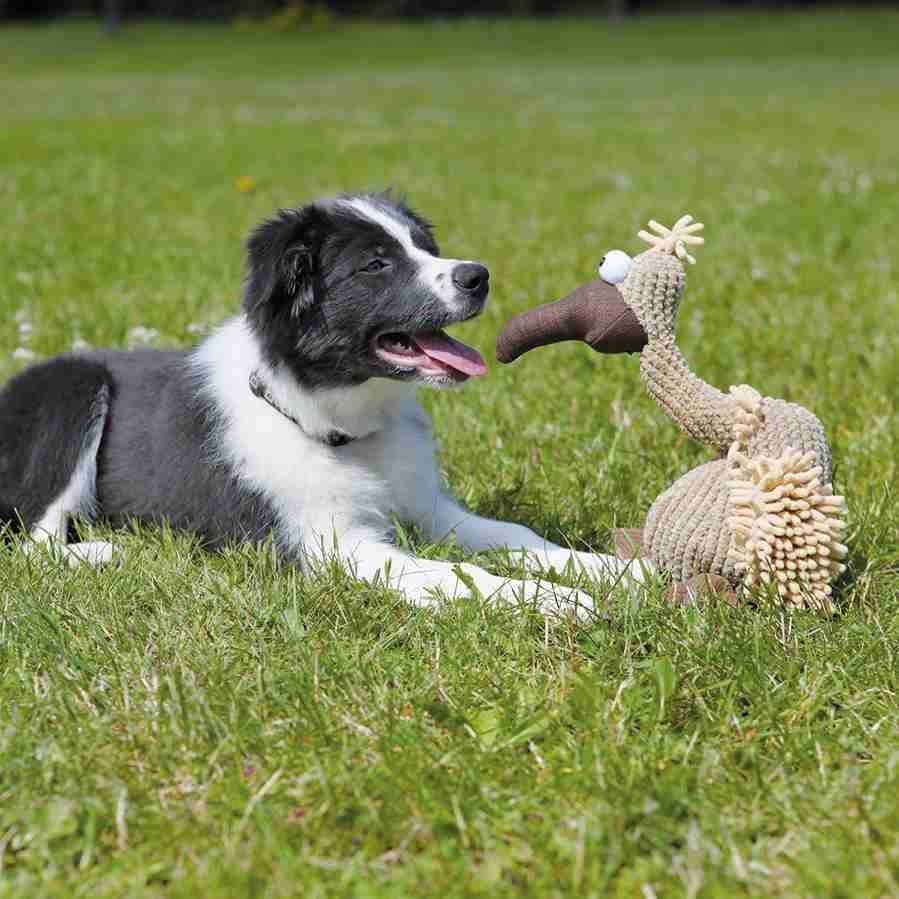 Trixie Gustav Geier aus Plüsch, Spielzeug für Hunde 35911, Bild 4