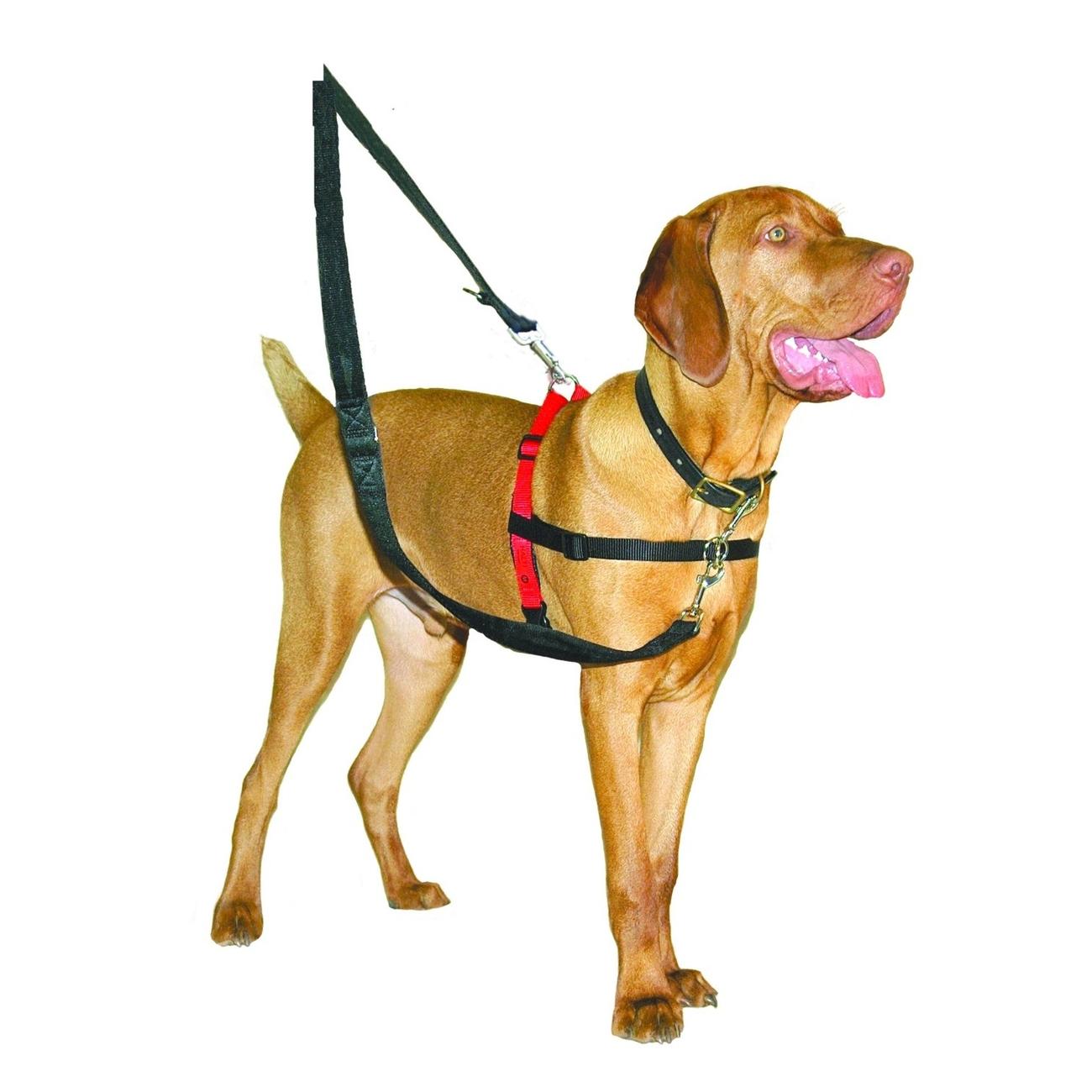 Company of Animals HALTI Harness Ausbildungsgeschirr für Hunde, Bild 2