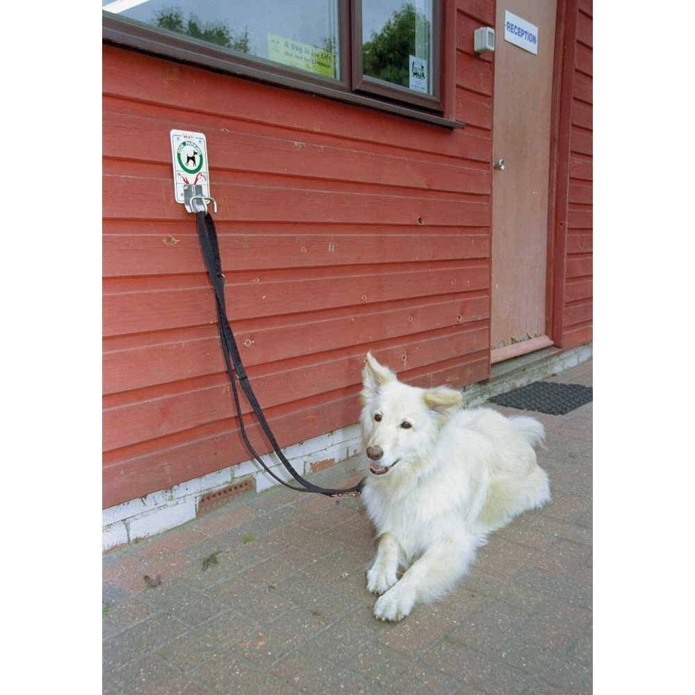 Company of Animals Halti Leine Training Lead, Bild 9