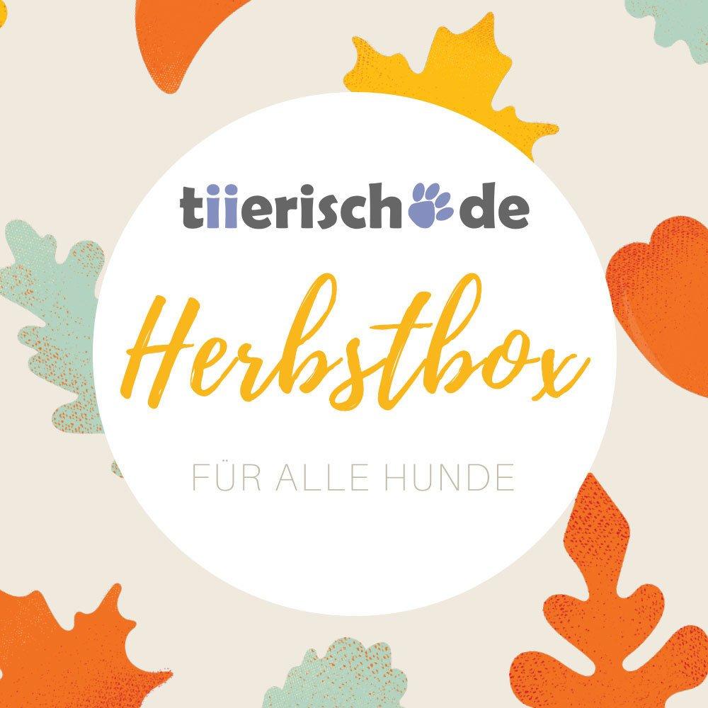 tiierisch.de Herbstbox für Hunde