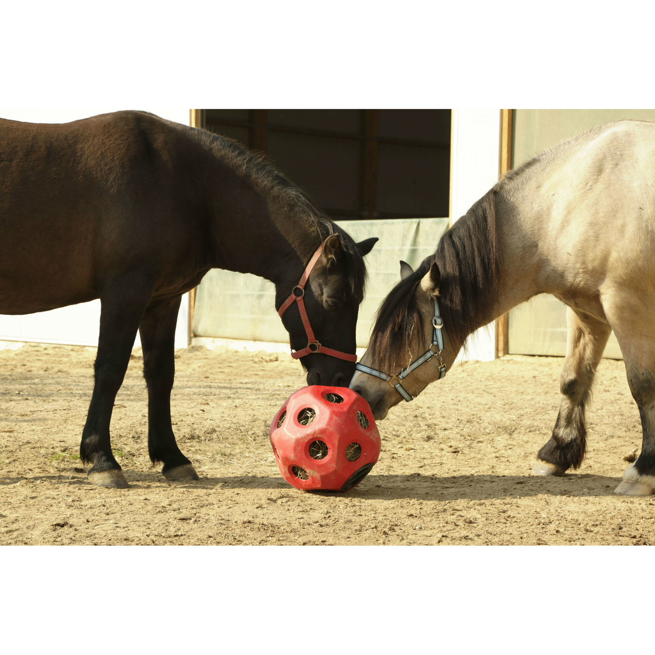 Kerbl HeuBoy Futterspielball für Pferde, Bild 8