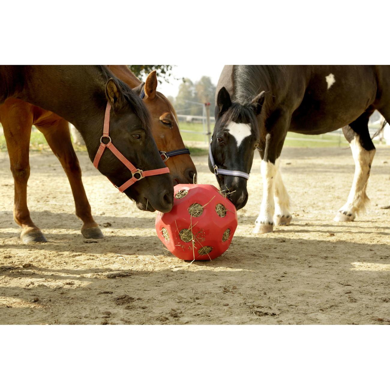 Kerbl HeuBoy Futterspielball für Pferde, Bild 2