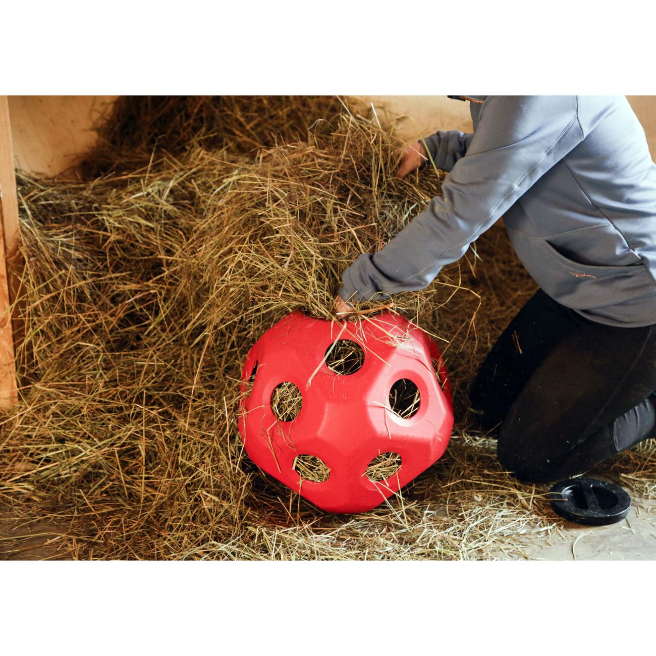 Kerbl HeuBoy Futterspielball für Pferde, Bild 7