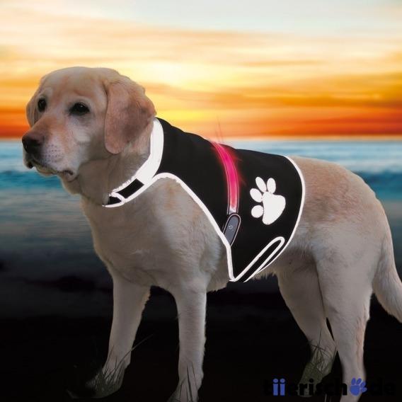 Trixie Leuchtweste für Hunde Flash