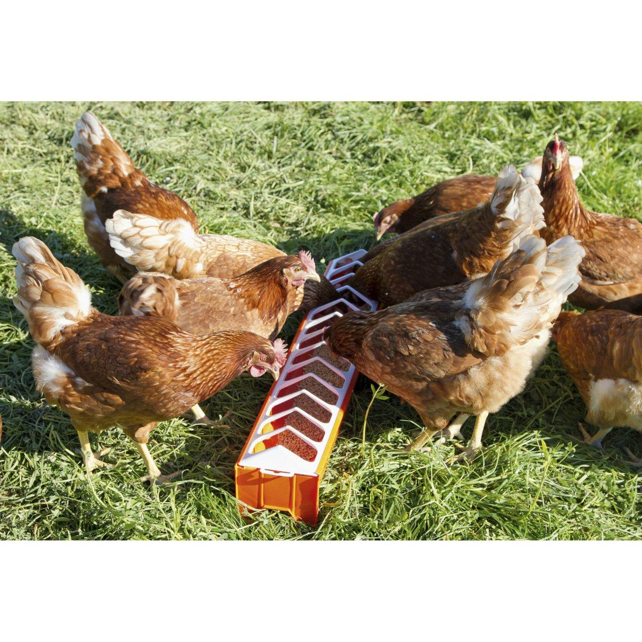 Kerbl Hühner Futtertrog aus Kunststoff, Bild 4