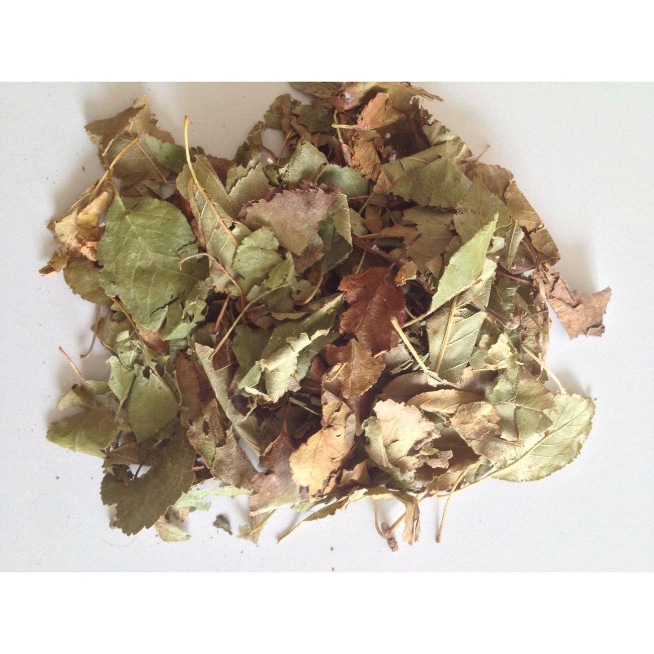 Hugro® Nagertraum Apfelbaumblätter, Bild 2