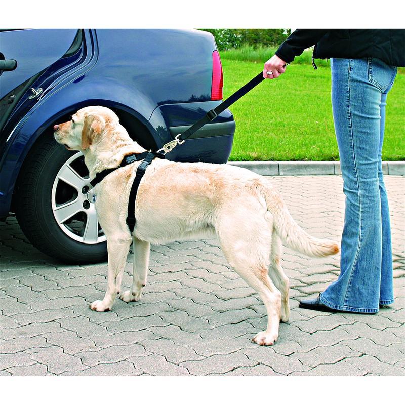 TRIXIE Hunde Sicherheitsgurt Sicherheitsgeschirr für das Auto 1288, Bild 5