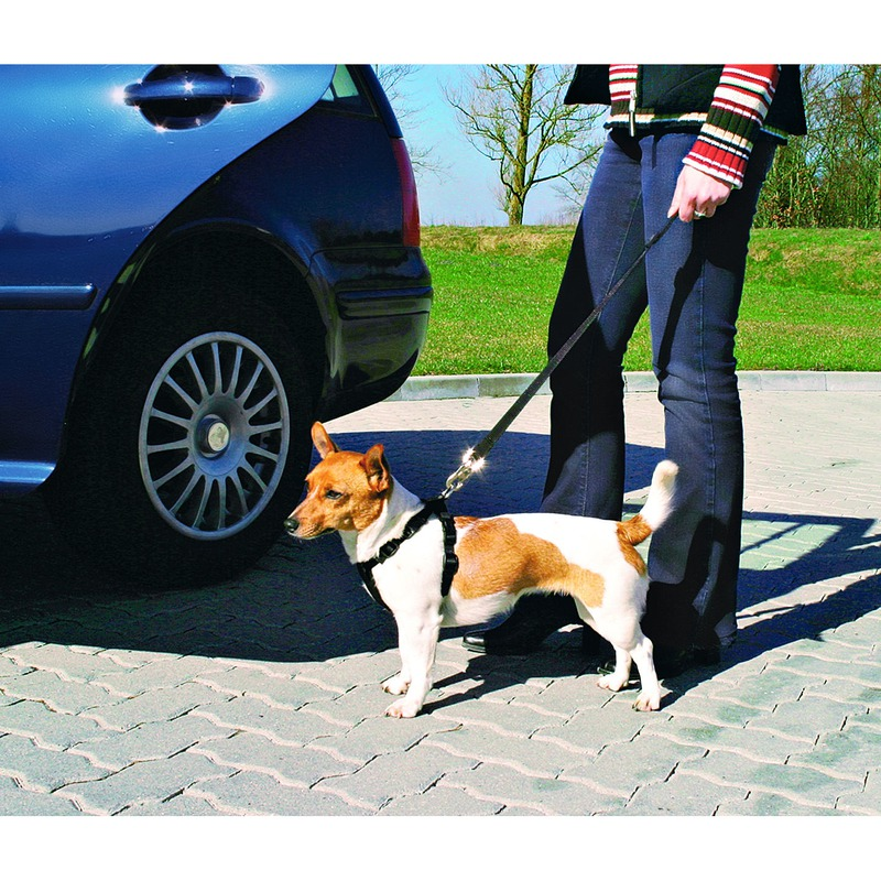 TRIXIE Hunde Sicherheitsgurt Sicherheitsgeschirr für das Auto 1288, Bild 4