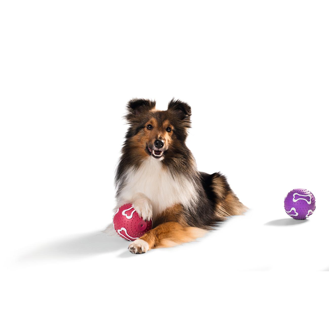 Hunter Hundeball mit Vanille 92517, Bild 3