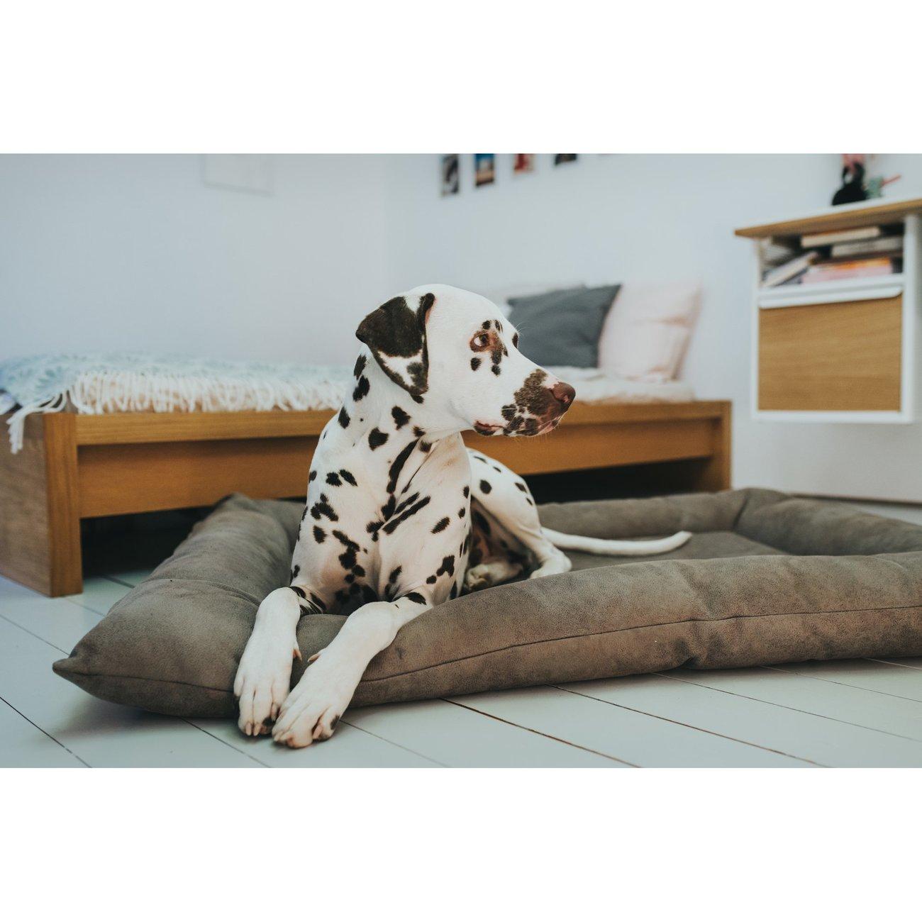 Hunter Hundebett Hundematte Bologna Kunstleder 67189, Bild 15