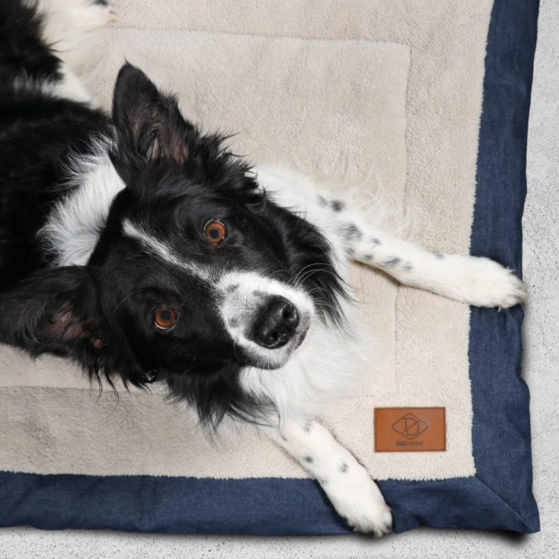 DREAM and DARE Hundedecke Davy aus Kanevas, Bild 2