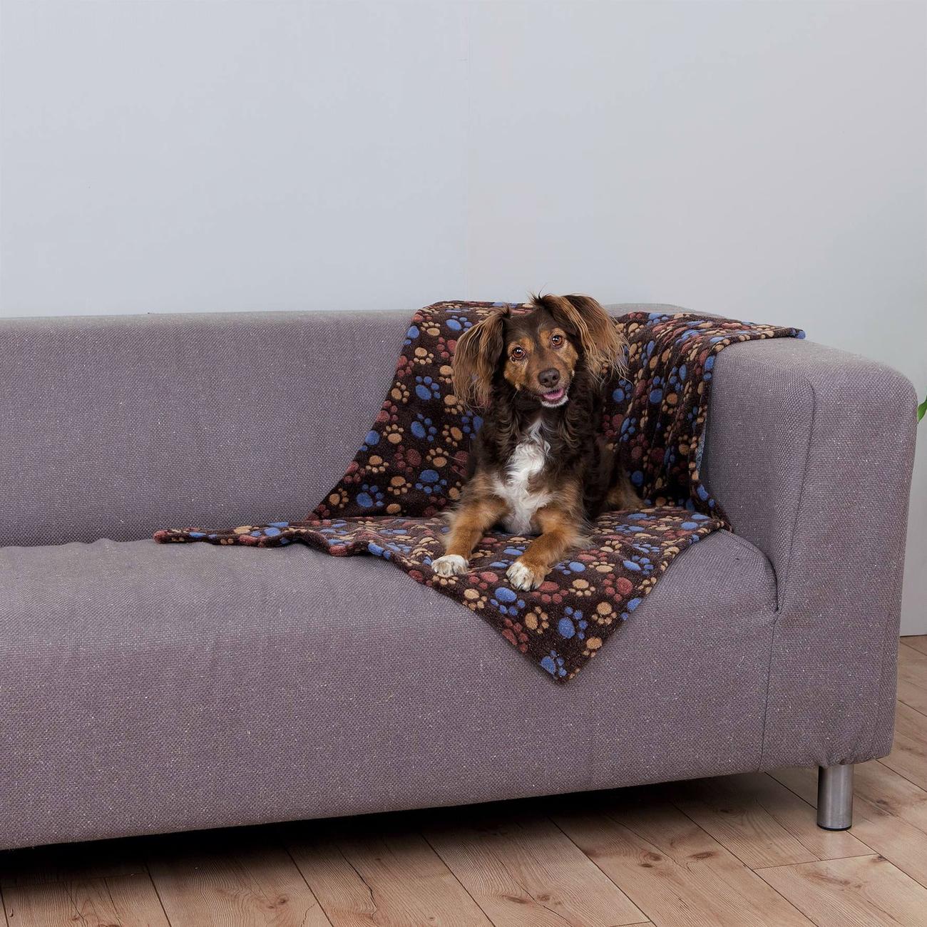 TRIXIE Hundedecke Fleece Laslo 37201, Bild 5