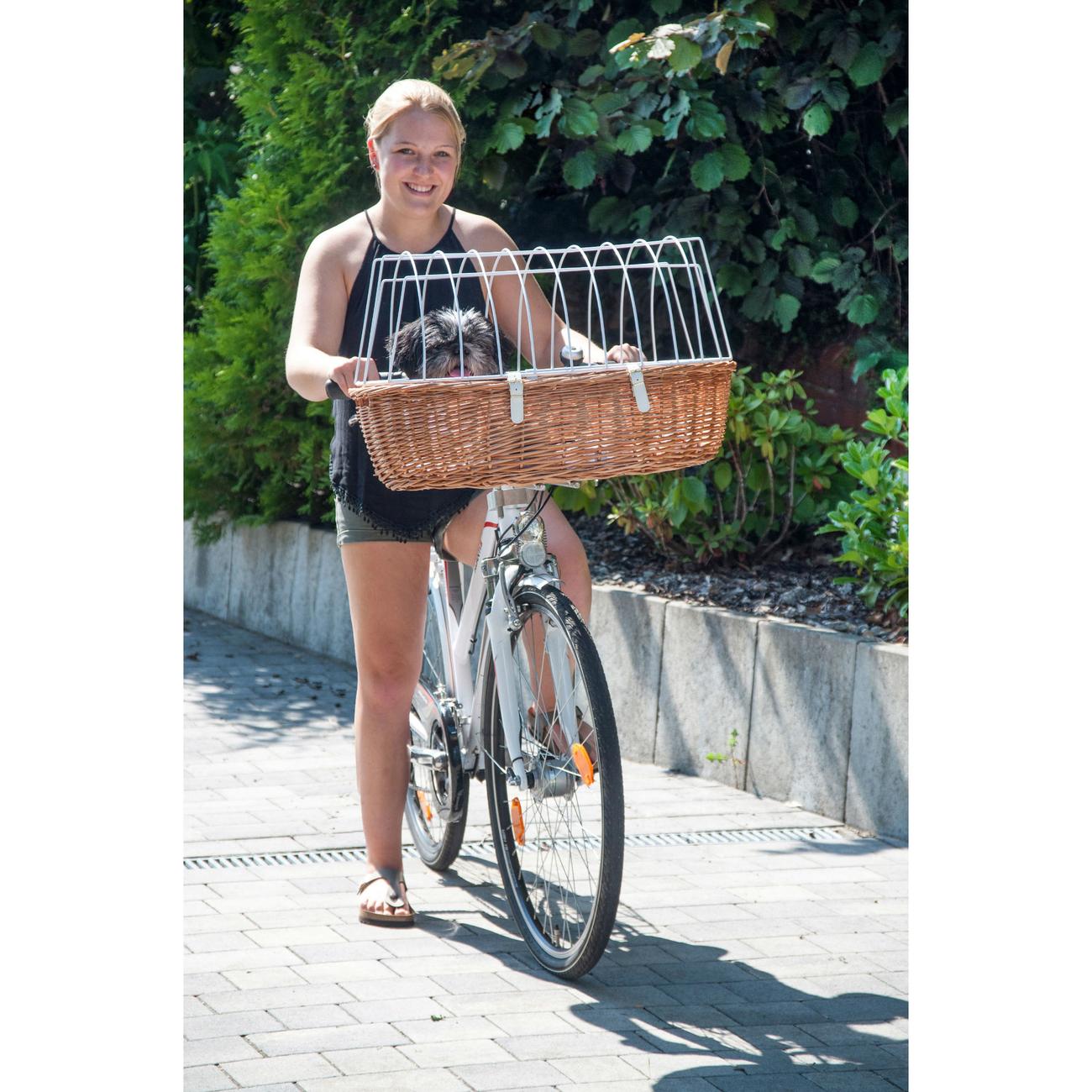 Aumüller Hundefahrradkorb Steuerkopfmontage vorne von Aumüller, Bild 3
