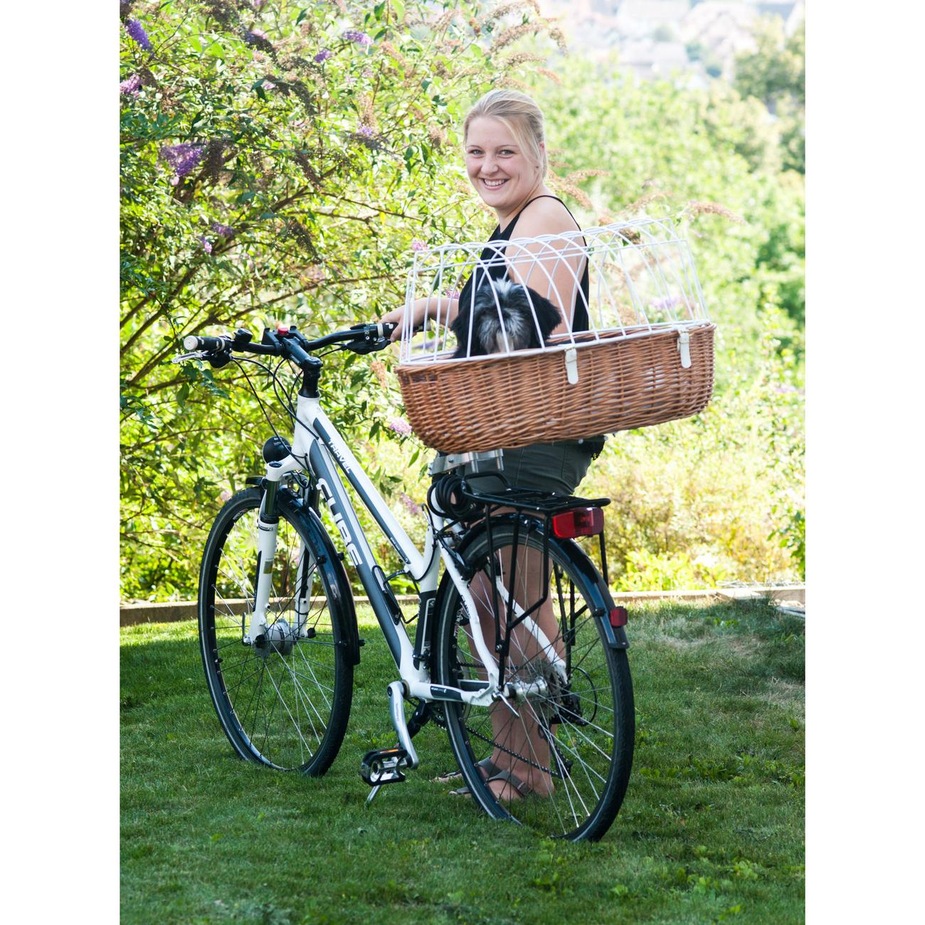Aumüller Hundefahrradkorb Steuerkopfmontage vorne von Aumüller, Bild 4