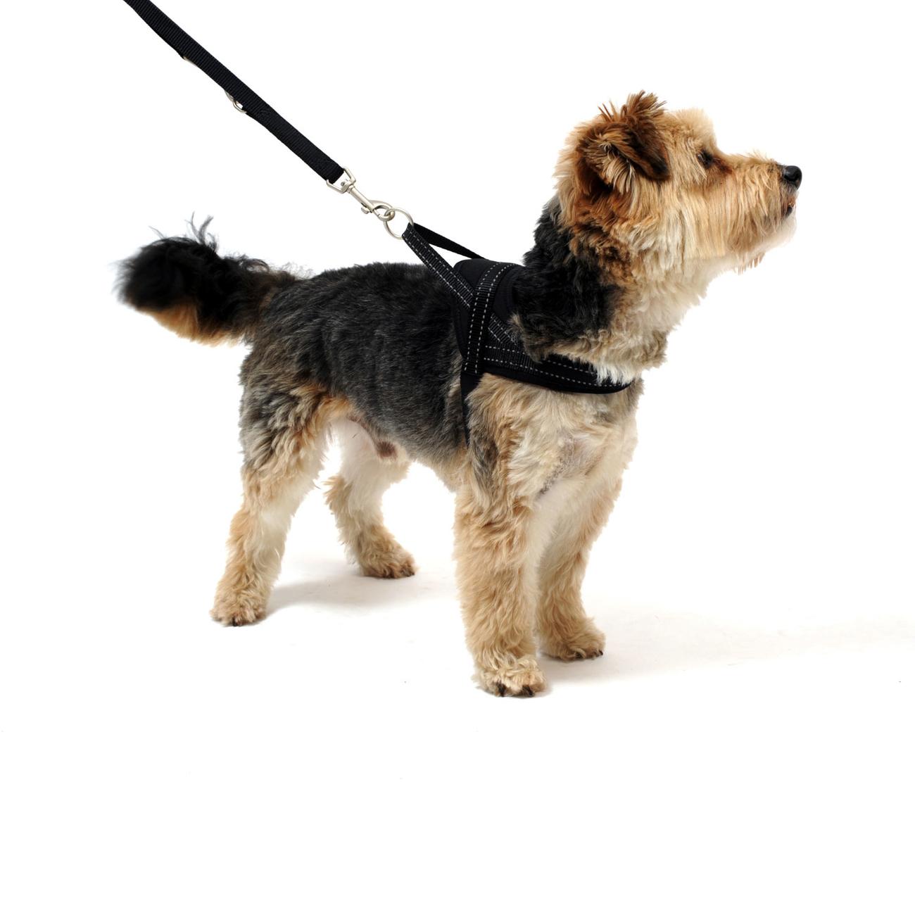 Wolters Hundegeschirr Soft & Safe reflektierend, Bild 6
